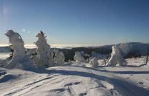 Schreiberhau im Winter